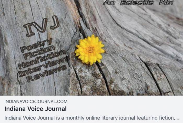 Indiana Voice Journal screenshot